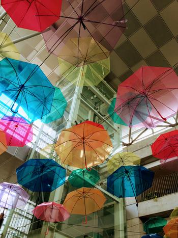 サレジオ学院文化祭 傘